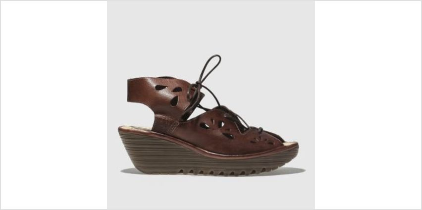 Fly London Brown Yote Womens Sandals from Schuh
