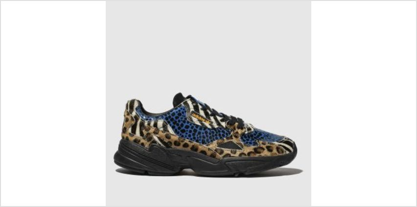 Adidas Multi Falcon Womens Trainers from Schuh