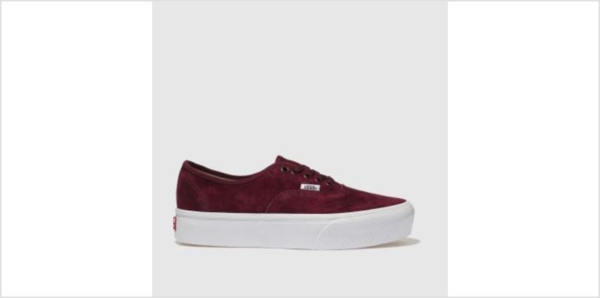 Vans Burgundy Authentic Platform 2.0 Womens Trainers from Schuh