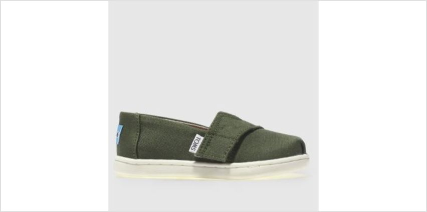 Toms Khaki Classic Unisex Toddler from Schuh