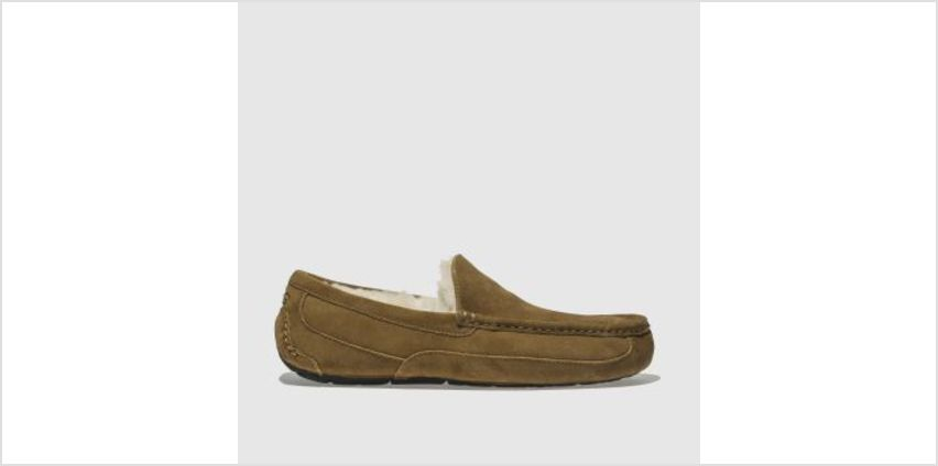 Ugg Tan Ascot Mens Slippers from Schuh