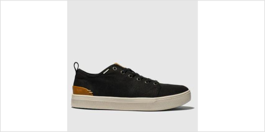 Toms Black Trvl Lite Low Mens Shoes from Schuh