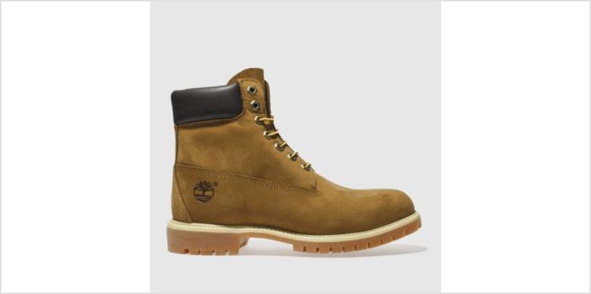 Timberland Tan 6 Inch Premium Mens Boots from Schuh