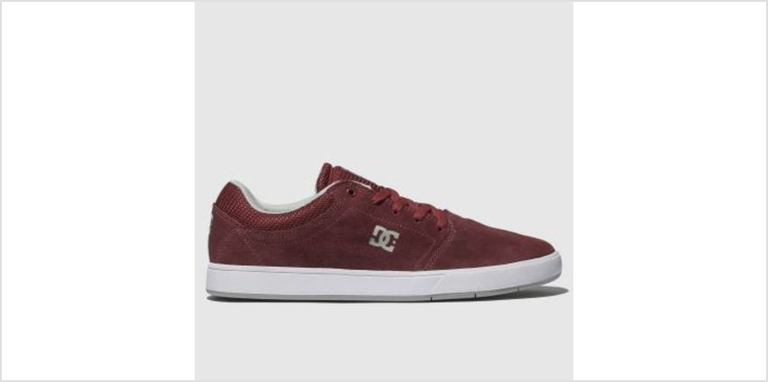Dc Shoes Burgundy Crisis Mens Trainers from Schuh