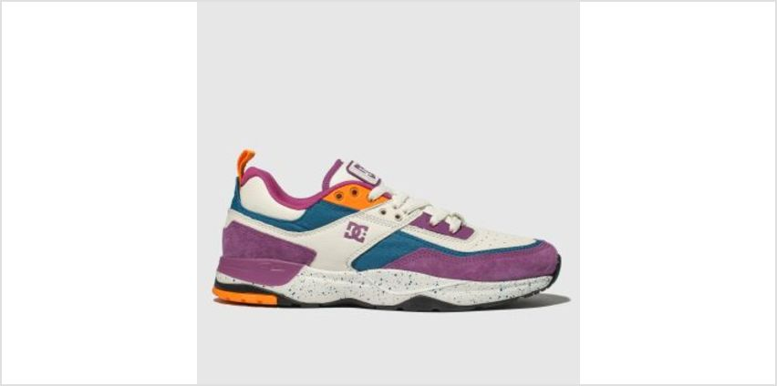 Dc Shoes White & Purple E. Tribeka Le Mens Trainers from Schuh