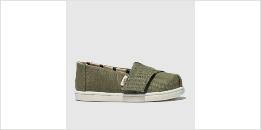 Toms Khaki Classic Boys Toddler from Schuh