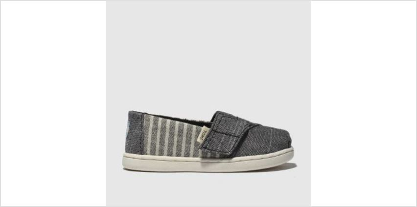 Toms Grey Classic Boys Toddler from Schuh