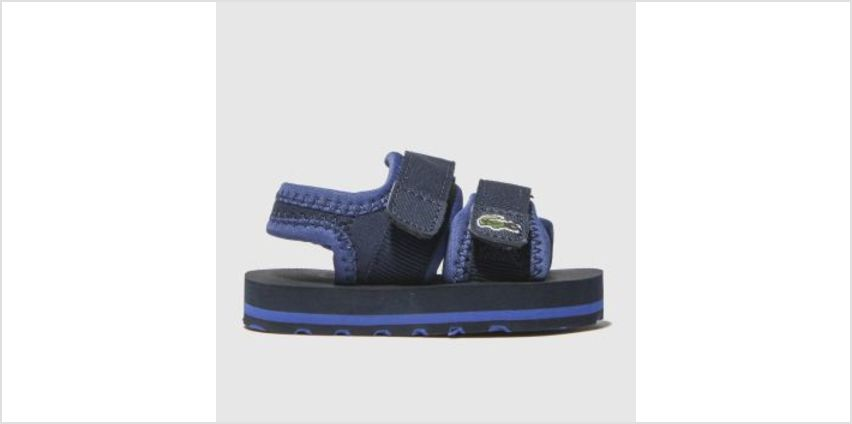 Lacoste Navy Sol Boys Toddler from Schuh