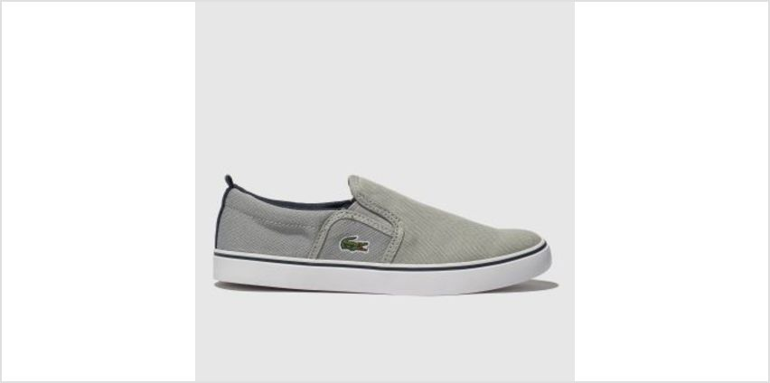 Lacoste Grey & Navy Gazon Boys Junior from Schuh