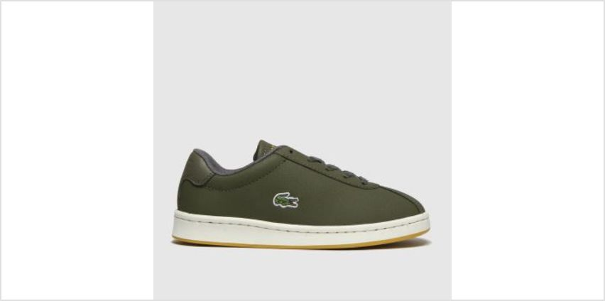 Lacoste Khaki Masters Boys Junior from Schuh