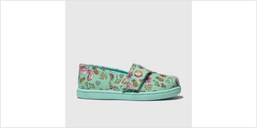 Toms Light Green Classic Girls Toddler from Schuh