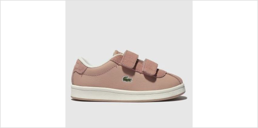 Lacoste Pale Pink Masters Girls Toddler from Schuh