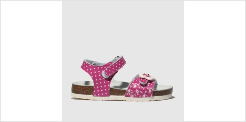 Lelli Kelly Pink Sonia Girls Toddler from Schuh
