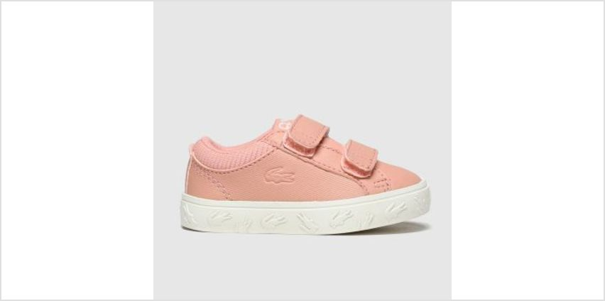 Lacoste Pink Straightset Girls Toddler from Schuh