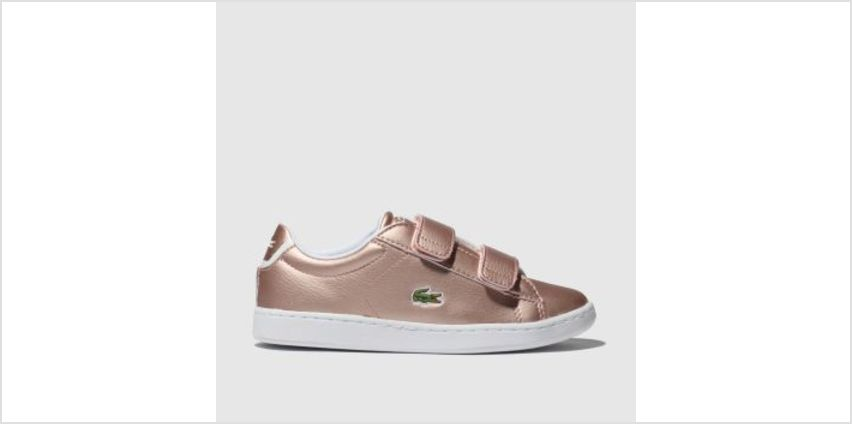 Lacoste Pink Carnaby Evo Girls Junior from Schuh