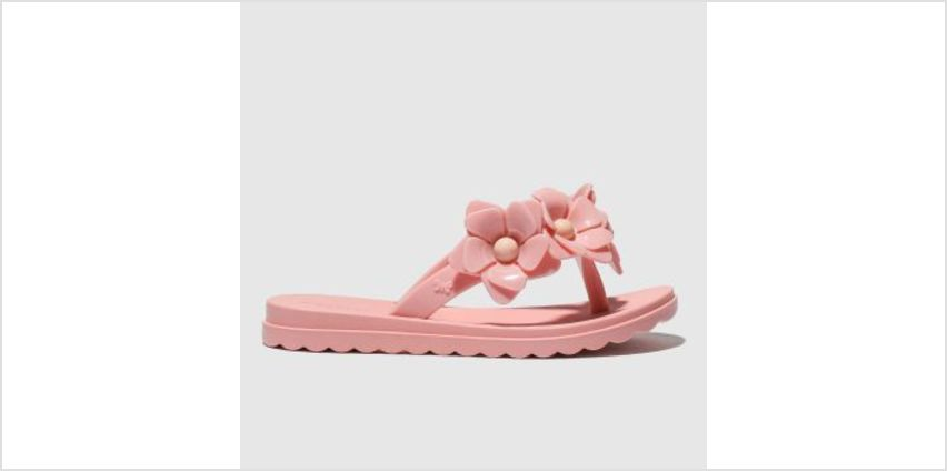 Zaxy Pink Fresh Floral Girls Junior from Schuh