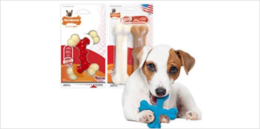 Save on Nylabone Dog Chews from Amazon