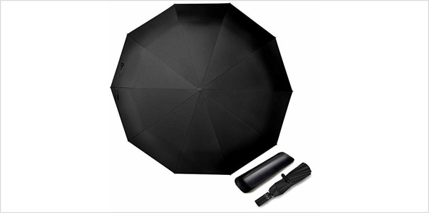 TOPLUS Umbrella 10 Ribs Windproof Auto Open & Close Large Compact Folding Golf Travel Umbrella, Reinforced Windproof Frame, Fast Drying Coating, Ergonomic Grip Leather Case and Slip-Proof Handle from Amazon