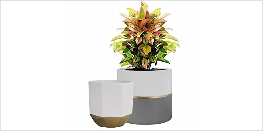 La Jolíe Muse Plant Pot Indoor - H16.5cm Ceramic Flower Pot 2 Pack for Garden Planters Decor from Amazon