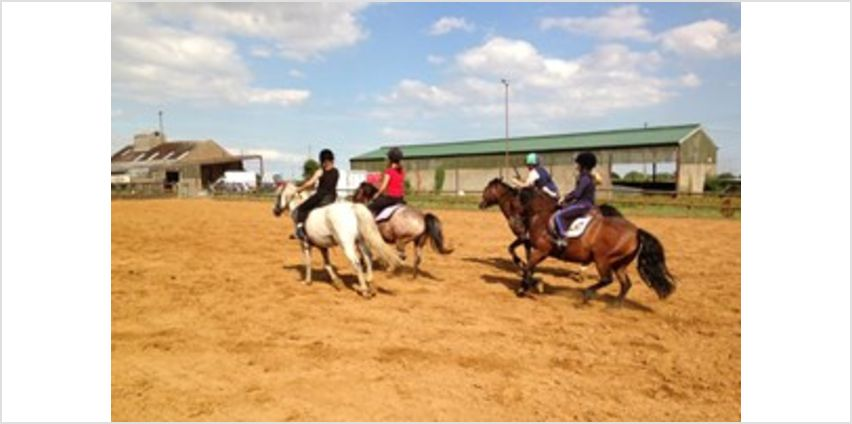 One Hour Horse Riding Experience - UK Wide from Buy A Gift