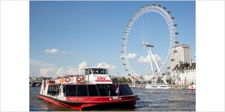 Family Thames Sightseeing Cruise with 24 Hour Rover Pass from Buy A Gift