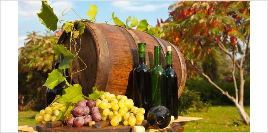 Online Wine Making Course from GoGroopie