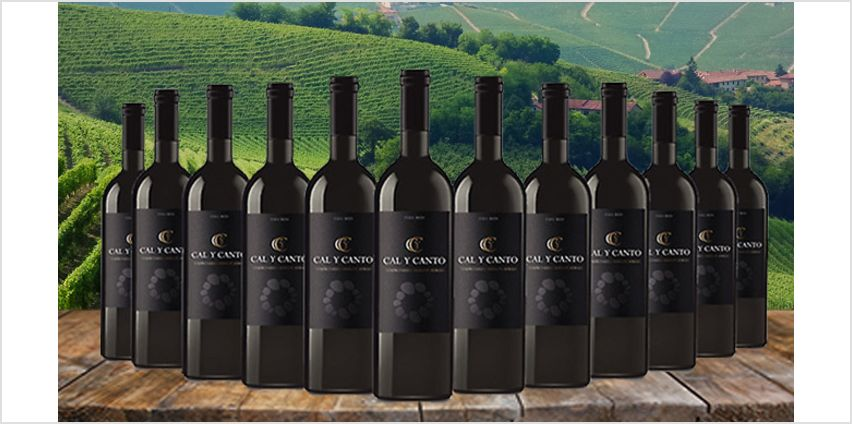 12 Bottles of Award-Winning Cal Y Canto Castilla Red Wine - Free Delivery! from GoGroopie