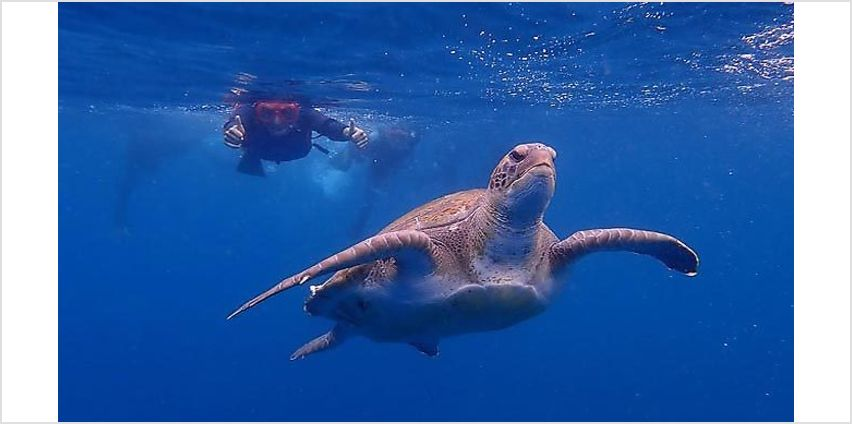 3-7 Night 4* Hotel Stay With Breakfast, Flights & Kayaking And Snorkelling Tour from GoGroopie