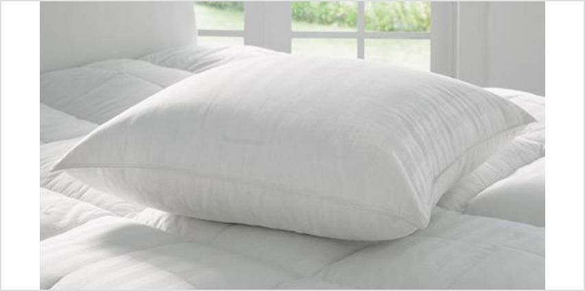 2 or 4 Pack of European Pillows from GoGroopie