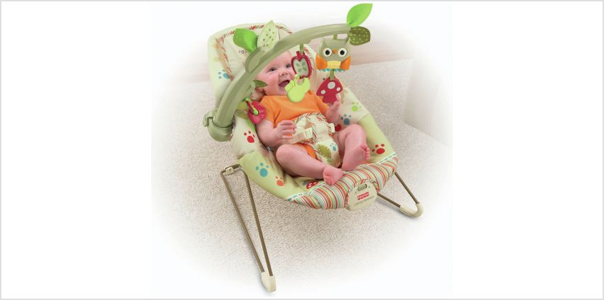 Fisher-Price Woodsy Friends Comfy Time Bouncer. from Argos
