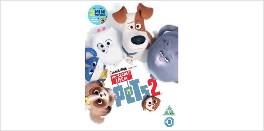 The Secret Life of Pets 2 DVD from Argos