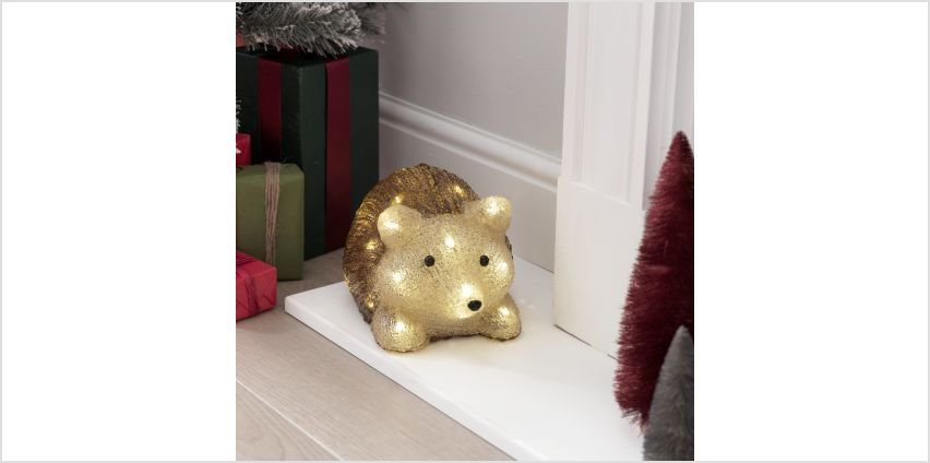Argos Home Warm White Acrylic Light Up LED Hedgehog from Argos