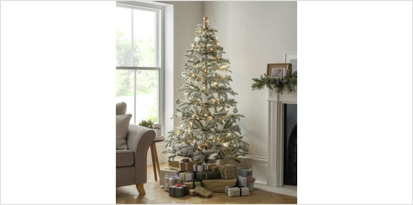 Argos Home 6ft Snowy Natural Cluster Christmas Tree - Green from Argos