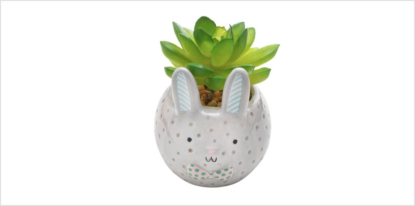 Argos Home Small Bunny Succulent Pot - 1 Provided from Argos