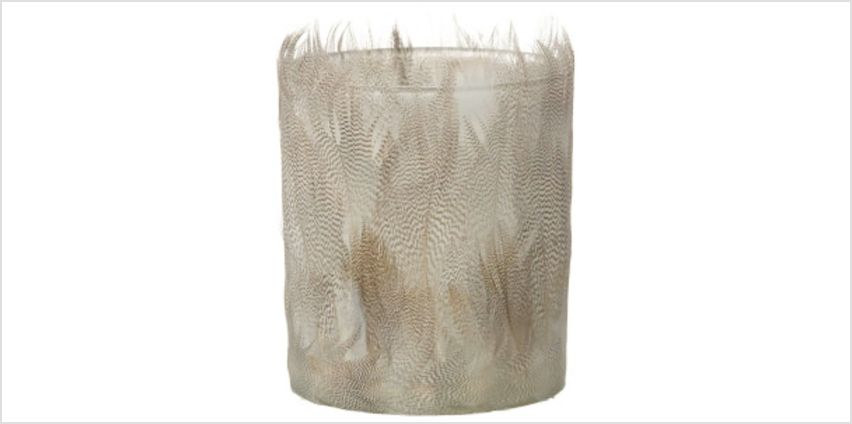 Parlane Feather Tealight Holder (10 x 8cm) - White from I Want One Of Those