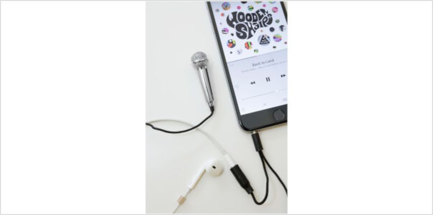 Mini Karaoke Microphone - Silver from I Want One Of Those