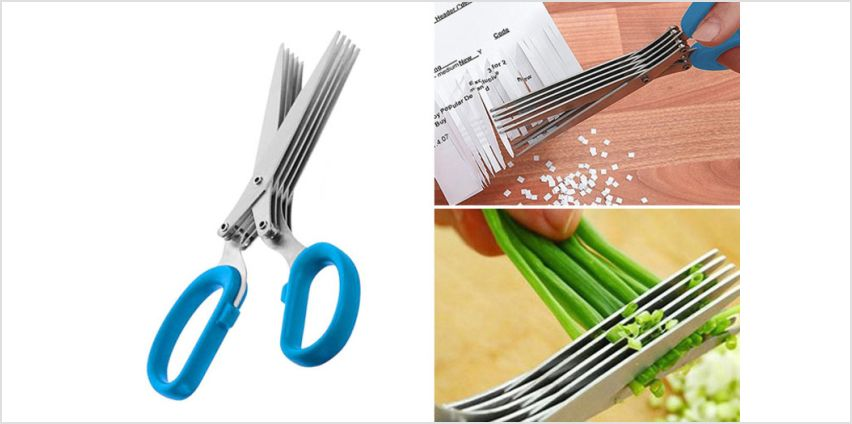 £4.99 instead of £19.99 (from London Exchain Store) for a pair of stainless steel herb scissors - save 75% from Wowcher