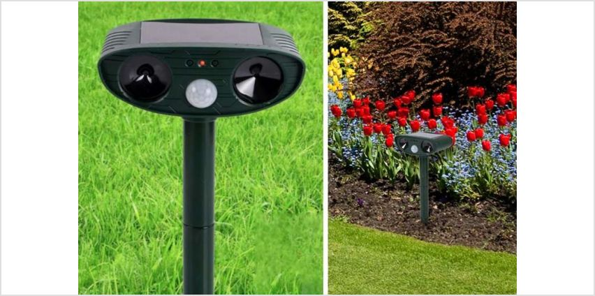 Keep your garden from being nibbled with a non-harmful ultrasonic animal and pest repeller! from Wowcher