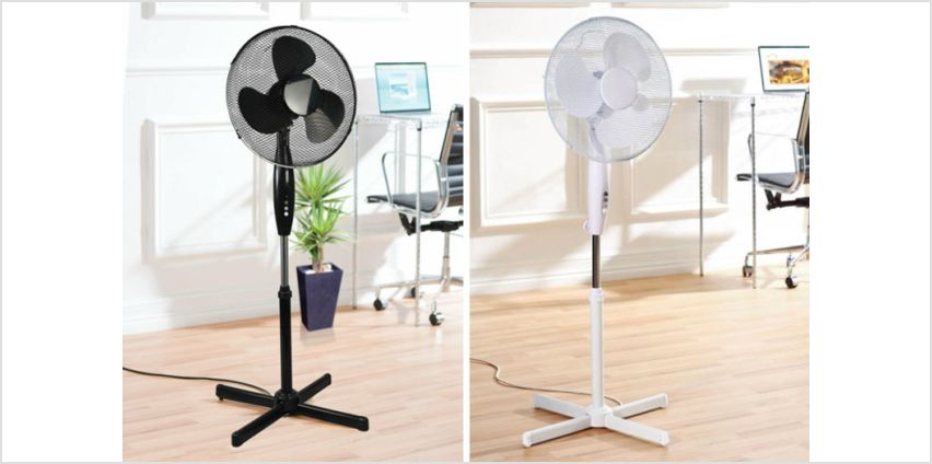 """£29.99 instead of £59.98 (from Pricebuster) for two Daewoo 16"""" standing fans - save 50% from Wowcher"""