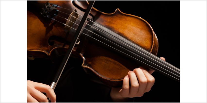 £9 instead of £79 for an online violin for beginners course - from OfCourse - save 89% from Wowcher