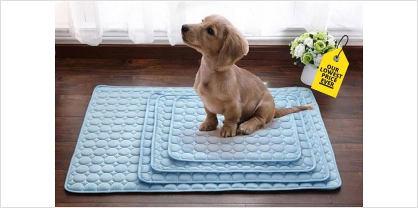 £3.99 instead of £29.99 (from Domo Secret) for a small pet cooling mat, £5.99 for a medium mat, £6.99 for a large mat, £9.99 for an extra large mat - save up to 87% from Wowcher