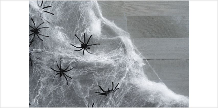 £1.99 (from Forever Cosmetics) for a spooky Halloween spider web, £3.49 for a set of two or £4.99 for a set of three - choose from three colours from Wowcher