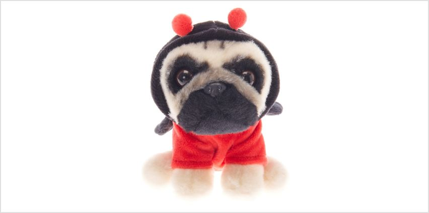 Go to Product: Doug the Pug ™ Small Ladybug Soft Toy - Cream from Claires