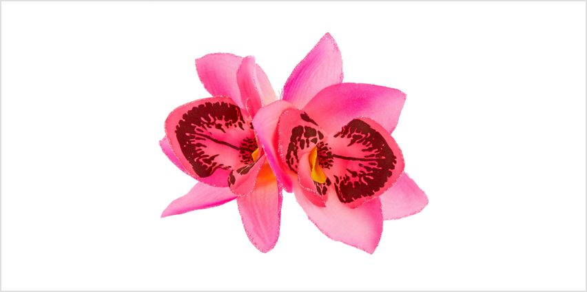 Go to Product: Orchid Flower Hair Clip - Hot Pink from Claires