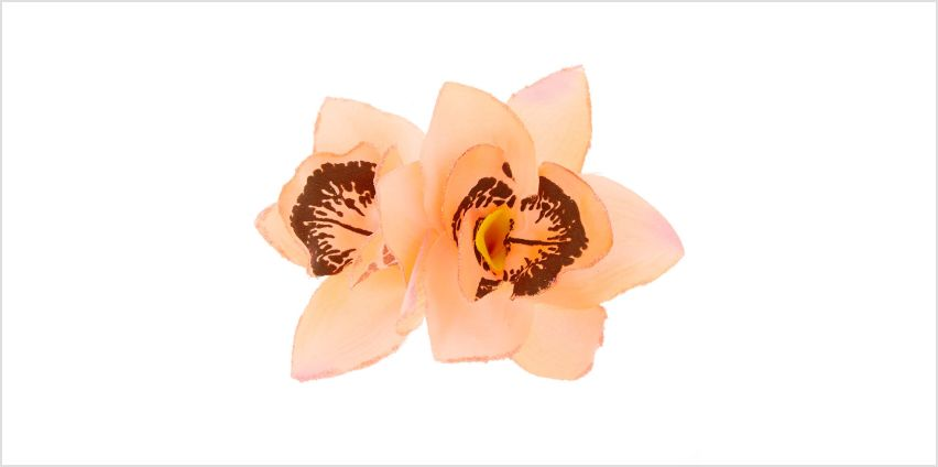 Go to Product: Orchid Hair Clip - Coral from Claires