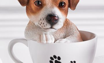 Teacup Pet Pals - Jack Russell