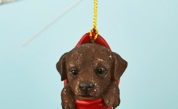 Labrador Pet Pal Hanging Stocking Decoration