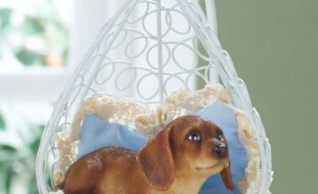 Sausage Dog in Rattan Chair