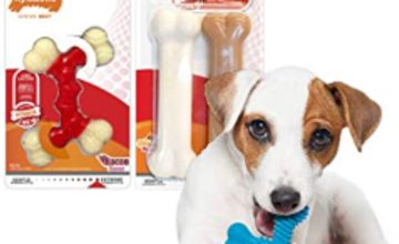 Save on Nylabone Dog Chews