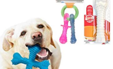 Save on Nylabone Chews, for your dogs dental health